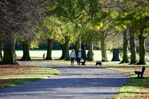 Calderstones_park_path_c_Dave_Jones